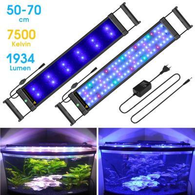 Main Luz LED
